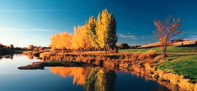 Moving to Swift Current SK with Camovers - local and long distance movers in Canada