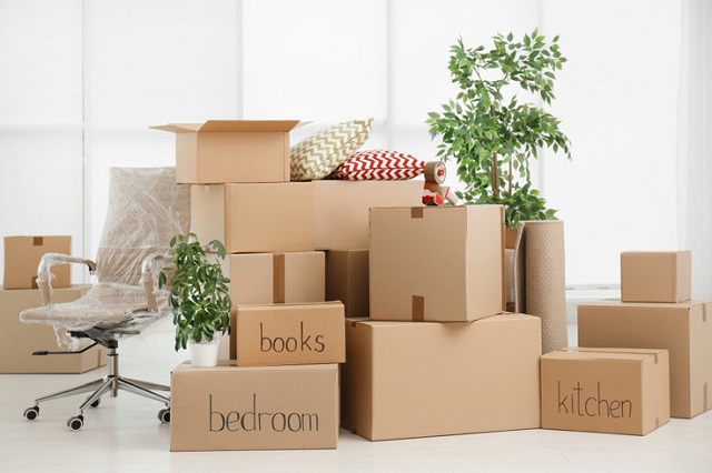 Long-distance movers in Mount Pearl | Top moving companies